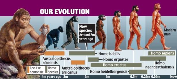 HumanEvolution1